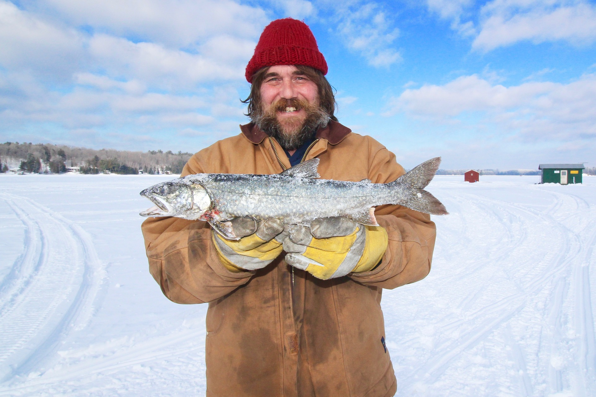 Lake Harriet has many different kinds of fish for you to catch on your next ice fishing trip.